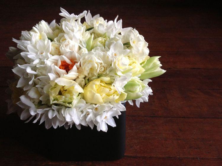 Flowers January 13 white