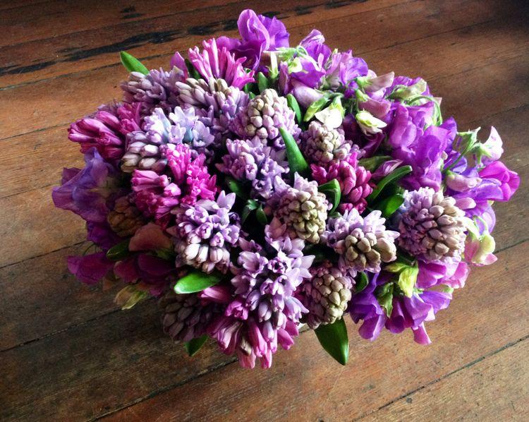 Purple & pink 5