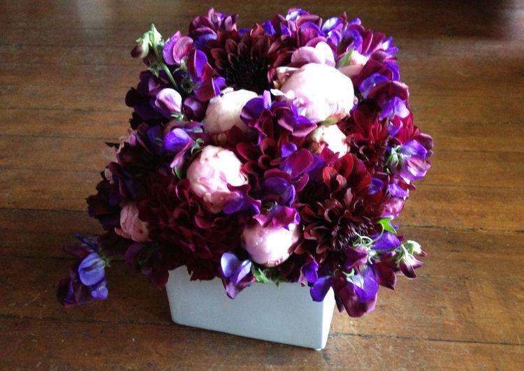 Purple & pink 03